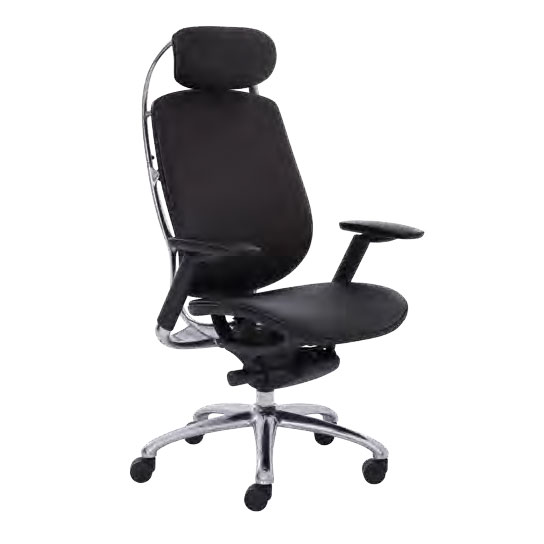 Awesome Executive Chairs